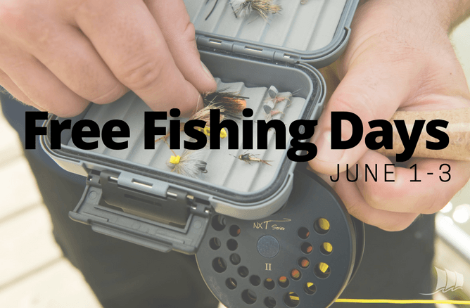 Free Fishing Day