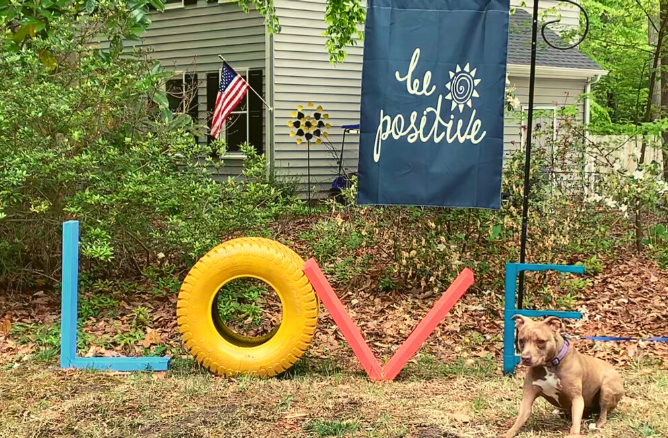 Love letters made from plywood and a tire, painted, dog standing next to letters